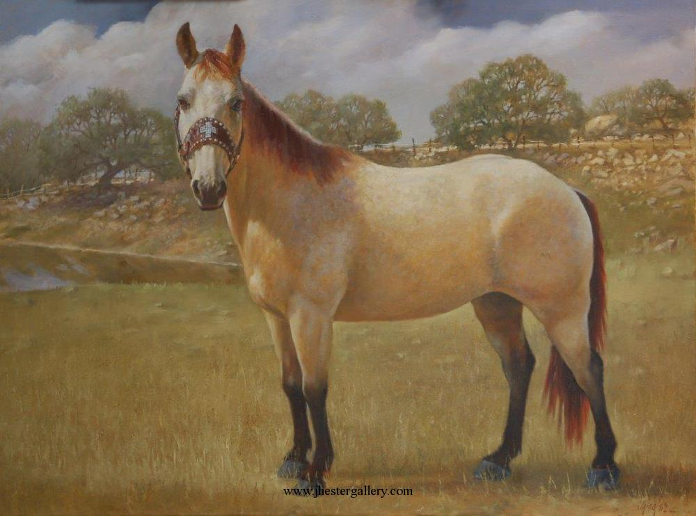 """Dillon""<br>This much beloved horse is a rodeo wonder, much loved throughout Texas! Dillon - Commission Commissions Custom Paintings"
